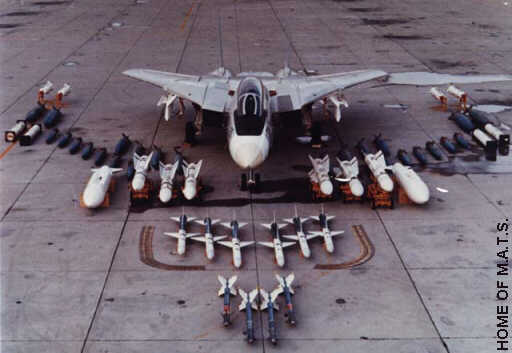 Weapons &; stores for the f-14